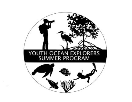 YOE Logo