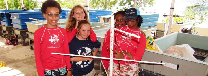 Students get to assist with ongoing UVI research.