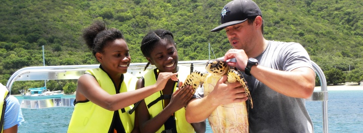 Students learning about UVI's sea turtle research program.