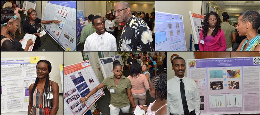 Students present at 2013 Fall symposium