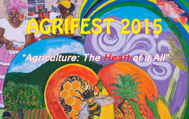 University of the Virgin Islands Agrifest photo