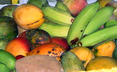 Photo of mangoes and tropical fruits