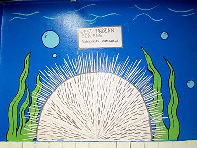 Marine Biology school subjects art