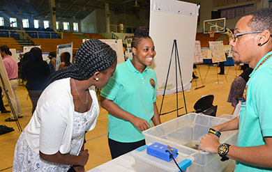 Students View Posters at Research Day Activity